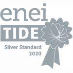 Enei-Tide Silver Standard 2020